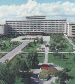 东北农业大学图片
